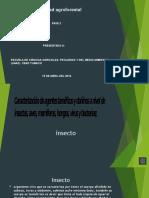 Presentación1 SANIDAD AGOFORESTAL.pptx