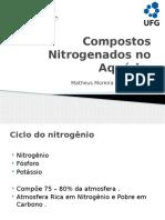 COMPOSTOS NITROGENADOSs.pptx