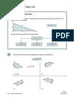 teorema_pitagoras decimo.pdf