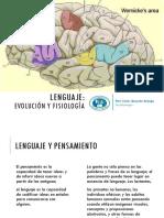 Unidad 8 - Fisiología del lenguaje