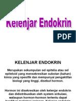 anatomi kel. endokrin 1