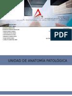 Unidad de Anatomina Patologica 1