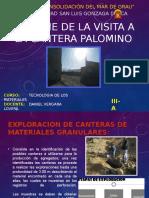 Informe de La Cantera Palomino