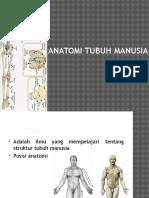 Anatomi tulang manusia 1.pptx