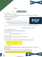 teorica-enzimas