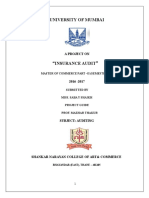 Auditing Saba (1) (1)