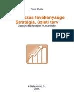 Vállalkozás Stratégiája, Üzleti Terv