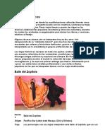 Trajes folclóricos del pacifico de nicaragua.docx