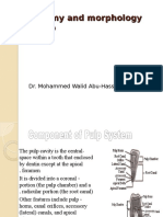 1-Anatomy and Morphology of Pulp