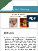 192821656-Baby-Led-Weaning.pptx