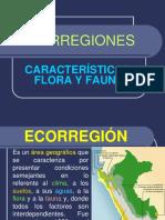 ECORREGIONES (1)