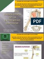 Anatomía Radiológica de La Extremidad Superior