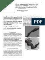 Informe Individual PMI-G5
