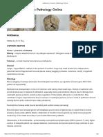 Asthama _ Forensic Pathology Online