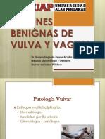 10_ Patología Vulvar y Cervical