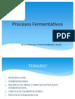 Procesos fermentativos alumnos2016