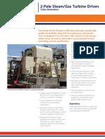 PRD 308 2 Pole Steam Gas Turbine 12-3-09 Turbo Generators
