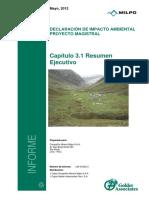 3.1_Resumen_Ejecutivo_DECLARACION DE EIA.pdf