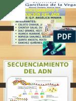 EXPOSICIÓN SECUENCIAMIENTO Y CLONACIÓN DEL ADN.pptx