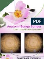 Spt Kelompok a. Anatomi Bunga