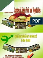 Vegetable and Fruit Post Harvest Handling