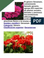 El Género Geranium