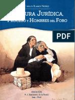 Cultura Juridica
