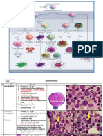 Pk Identifikasi Sel-sel Darah