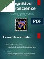 chap 2 brain imaging rvaessen2016