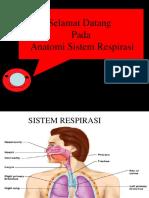 Anatomi Sistem Pernapasan Tayang