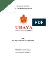 Cover Ubaya