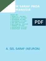 sistem saraf presentasi.pptx