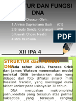 Bio-DNA