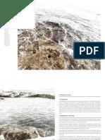 Framing the Wild Edge - NicoleLarkin