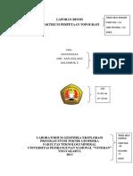 Format Laporan Resmi 2013