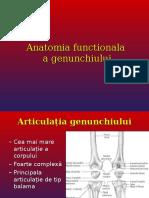 Curs 3 - Anatomia Functionala a Genunchiului