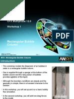 CFX Multiphase 12.0 WS01 BubbleColumn