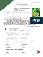 Test la limba și literatura română