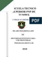 Silabo Desarrollado Seguridad Penitenciaria 2016