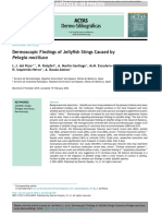 Dermoscopic Findings of Jellyfish Stings Caused by Pelagia Noctiluca_DEL POZO ET AL ACTAS