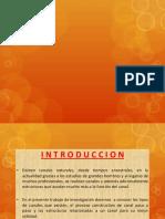 CLASE PROCESO CONSTRUCTIVO CANAL.pptx