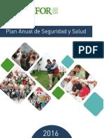 Plan Anual de Seguridad y Salud