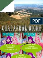 Cadangan Chaparral.pptx