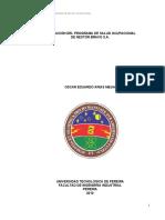 trabajo salud ocupacional.pdf