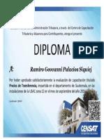 PRECIOS DE TRANSFERENCIA RAMIRO.pdf