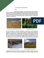 Ecosistemas de Chile-1