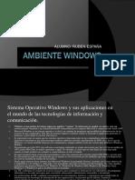 Recognize Ambiente Windows