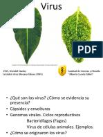 Te 20. Virus BioI 2015 I.pdf