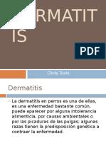 Dermatitis en animales