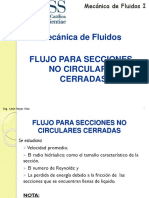 Flujos en Secciones No Circulares